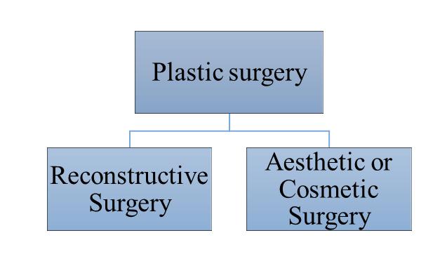 Plastic Surgery in India