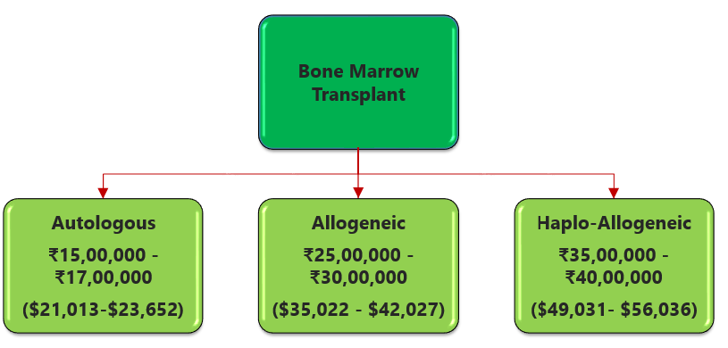 Bone Marrow Transplant Cost In India (Autologous,Allogeneic,Haplo-Allogeneic)