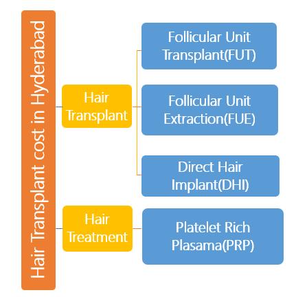 Hair Transplant Techniques