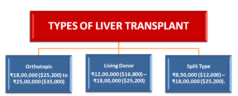liver transplant cost in India by types: Orthotopic, Living donor, Split type